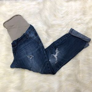 Indigo Rein Distressed Maternity Capri Jeans L